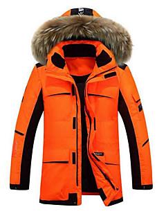 Herren Daunen Mantel,Standard Einfach Lässig/Alltäglich Solide-Polyester Weiße Entendaunen Langarm Beige / Schwarz / Orange Ständer