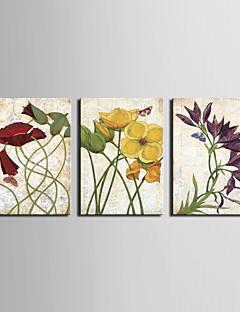 Stretched Canvas Art Floral Dancing Flower Set of 3