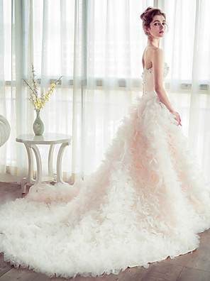 Ball Gown Wedding Dress Chapel Train Strapless Tulle with Flower