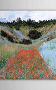 Huile célèbre tableau un champ de pavot près de Giverny dans un creux par Claude Monet