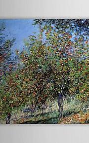 Célèbres peinture à l'huile des pommiers sur la Colline Chantemesle par Claude Monet