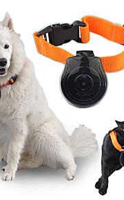 digitale videocamera honden kraag katten puppy-monitor recorder huisdier kraag oog cam