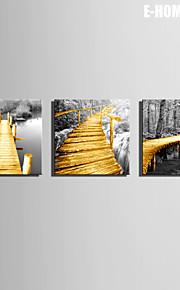 e-Home® sträckta canvas konst träbron dekorativt måleri uppsättning av 3