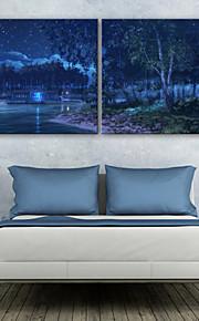 e-Home® sträckt ledde kanfastryck konst natten i skogen ledde blinkande optisk fiber print set om 2