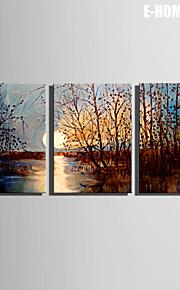 E-Home® Leinwand Kunst Sonnenuntergang Sumpf Dekoration Malerei Set von 3
