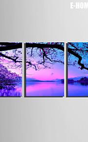 E-Home® Leinwand Kunstlandschaft auf dem See Dekoration Malerei Set von 3