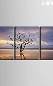 e-home® strukket lerret kunst vann tre dekorasjon maleri sett med 3