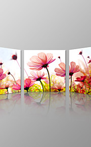 VISUAL STAR®Beautiful Flowers Picture Art Prints Wall Hanging Stretched Canvas Prints Romantic Flora Canvas Wall Art