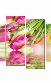 visuell star®flower tulipan strukket lerret utskrift av høy kvalitet veggen kunst klar til å henge