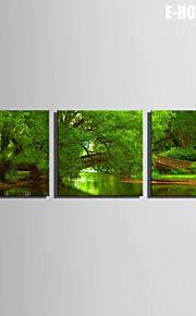 E-Home® Leinwand Fluss Kunst in den grünen Wald dekorative Malerei Set von 3