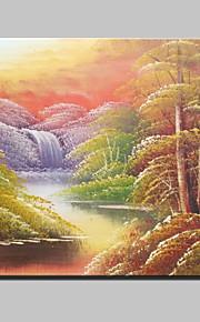 20x25cm을 중단 할 준비가 캔버스 하나의 패널에있는 미니 사이즈의 손으로 그린 풍경 현대 유화