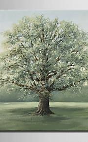 草純粋手持ちのミニサイズe-ホーム油絵現代の大きな木は、フレームレス装飾画を描きます