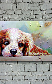 100% Handpainted Oil Painting Lovely Dog Living Room Decor Painting Home Decorative Art Picture Paint on Canvas
