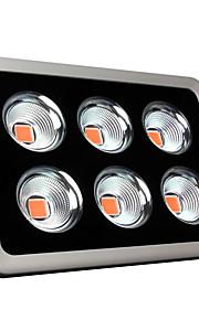 900W Lampes Horticoles LED 30000 lm LED Haute Puissance AC 85-265 V 1 pièces