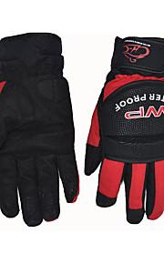 guanti moto equitazione MS001, Motociclismo guanti caldi impermeabili