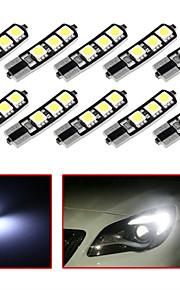 10stk t10 6smd 5050 CANbus bil LED lys pære til bil baglygte side parkering dome dør kort lys (DC12V)