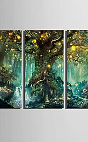 E-HOME® Stretched LED Canvas Print Art Shining Fantasy Tree LED Flashing Optical Fiber Print Set of 3