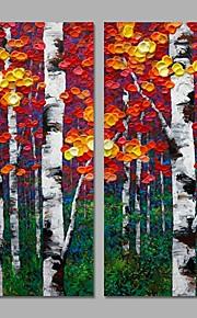 2 Panels Acrylic Painting Textured Design Home Decor Wall Art Handmade For Living Room