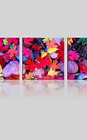 JAMMORY Canvas Set Landscape ,Three Panels Gallery Wrapped, Ready To Hang Vertical Print No Frame Colored Maple Leaves