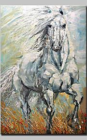 手描きの 抽象画 動物 油彩画,Modern リアリズム 1枚 キャンバス ハング塗装油絵 For ホームデコレーション