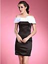 TRILBY - Kleid für die Brautmutter aus Tafft und Satin