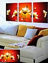 Sträckta canvas konst Blommor Gul Lotus Set av 3