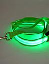 Dog Leash LED Lights / Safety Red / White / Green / Blue / Pink / Yellow / Orange Nylon
