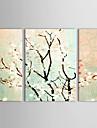 iarts®hand geschilderde olieverf bloemen Samuume met gestrekte frame set van 3