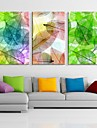 arte lona esticada colorido deixa set pintura decorativa, de 3 de