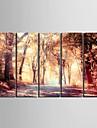 e-FOYER toile tendue art la chute de la mangrove decoratif ensemble de cinq de peinture