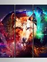 e-FOYER toile tendue es le superbe loup couleur decorative ensemble de trois de peinture