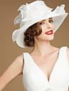lækker organza med paillet bryllup / bryllupsrejse hat