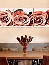 e-Home® sträckt arbetsytan konst ros dekoration målning uppsättning av 3