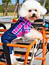 Hundar T-shirt / Byxa Grön / Ros Hundkläder Sommar Jeans