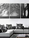 e-Home® sträckta canvas konst trädet dekorativt måleri uppsättning av 3