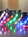 Hundar Halsband LED Lampor Regnbåge Nylon