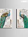 E-HOME® Stretched Canvas Art Green Peacock Decorative Painting Set of 2