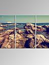 Abstrait / Fantaisie / Loisir / Paysage / Photographie / Moderne / Romantique / Pop Art Toile Trois Panneaux Pret a accrocher ,Format