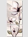 Botanique / Moderne / Pop Art Toile Trois Panneaux Pret a accrocher , Format Horizontal
