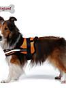 Hundar Selar Reflekterande / Andningsfunktion Solid Röd / Svart / Orange Nylon / Mesh