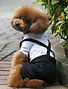 Câini Costume Σμόκιν Negru Îmbrăcăminte Câini Iarnă Primăvara/toamnă Bloc Culoare Nuntă Cosplay