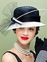 Femei Pană In Net Diadema-Nuntă Ocazie specială Informal Pălărioare Pălării/Căciuli 1 Bucată