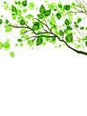 Blom Klassisk Fönsterklistermärke Material fönster~~POS=TRUNC