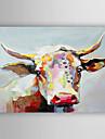 Pictat manual Animal Orizontal,Contemporan Stil Artistic Un Panou Canava Hang-pictate pictură în ulei For Pagina de decorare