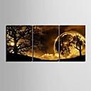 rastegnuti platnu umjetnosti sumrak ispod stabla skup od 3
