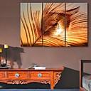 E-home® pruži platnu umjetnosti paunova pera ukras slikanje set od 3
