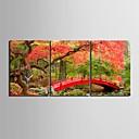 e-HOME® javor a mosty hodiny v plátěných 3ks