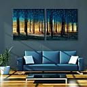 E-home® rastegnut na čelu platnu print umjetnosti Woods Flash učinak vodila set 2