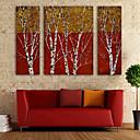 E-home® pruži platnu umjetnosti grana ukras slikanje set od 3