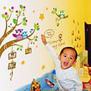 samolepky na zeď na stěnu, sova foto rámeček PVC samolepky na zeď